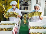 Indonesian firm AISA to acquire Vietnamese company