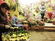 Consumers splash out on imported flowers