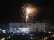 Vietnam rings in New Year with firework, music