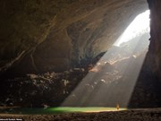 Vietnam, Australia cooperate in developing cave tourism