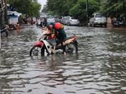 Climate change response developed in Mekong Delta region