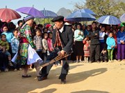 Mong ethnic group holds first Culture Festival in Ha Giang