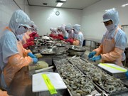 Agro-forestry-fishery exports valued at 1.78 bln USD in February