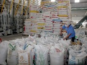 Rice exports face challenges in 2015