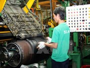 Binh Duong records 415 million USD trade surplus in early 2015