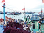 Fishermen to get modern boats