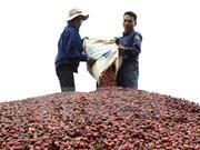 Over 200 enterprises join coffee exhibition-fair