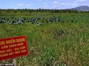 Agent Orange-related issues discussed at US Congress