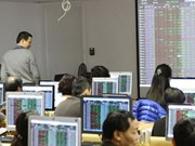 Bank, property shares back VN-Index