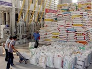 Low Vietnamese rice export in Q1