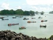 Hai Phong fosters tourism development
