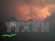 Fire under control in U Minh Thuong forest