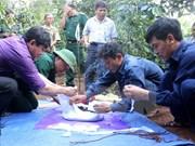 War remains found in Binh Duong