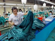 Vietnam's supporting industry goes to Europe