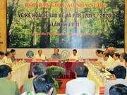Deputy PM asks for more efforts in forestry sector restructuring