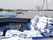 Agro-forestry-fishery exports continue to disappoint