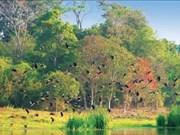Cat Tien national park develops ecotourism