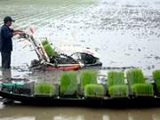 Vietnam capitalises on abundant sources of biomass energy