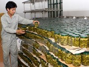 Huge opportunities for Vietnam farm produce to penetrate RoK