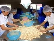 Vietnam pours 20 billion USD abroad