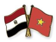 Vietnam, Egypt hold eighth political consultation