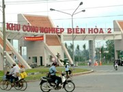Dong Nai reports high demand for unskilled workers