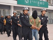Twelve Vietnamese women rescued from trafficking gangs