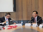 Vietnam-Germany University reviews performance in Frankfurt