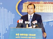 Foreign Ministry: no Vietnamese MERS cases