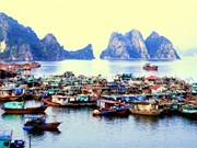 Vietnam to address obvious solutions to foster tourism: official