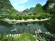 Valuable relics discovered in Ninh Binh