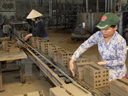 Denmark funds Vietnam's energy saving initiatives