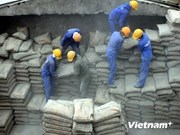 Vietnam's GDP growth in Q2 reaches five-year record
