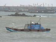 Quang Ninh begins post-flood recovery efforts