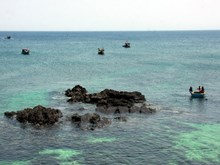Discovery of small island in Ly Son district