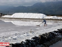 """""""White snow mountains"""" on Hon Khoi salt field"""