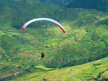 Paragliding over yellow terraced rice fields