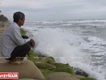 Sea encroaches deeply in Cua Dai beach