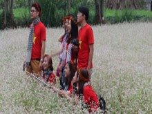 Impressive buckwheat flower festival in Ha Giang