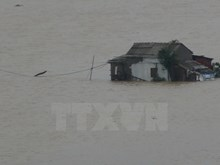 Quang Binh submerged in water, again