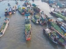 Tourism - important pillar in Vietnam's economy: EIU