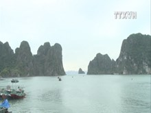 Quang Ninh welcomes 8.3 million visitors this year