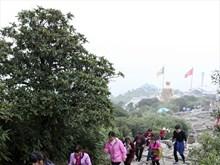 Pilgrimage to Yen Tu - The Buddhist Land