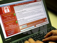Vietnam keeps eyes peeled for WannaCry ransomware