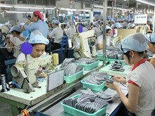 Vietnamese firm to grasp opportunities from AEC