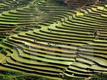 Beauty of Dien Bien's high mountain villages
