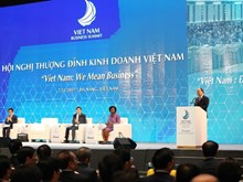 Vietnam Business Summit held in Da Nang city