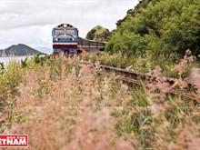 Travelling along Vietnam on rolling train wheels