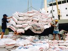 Vietnam's rice export to enjoy prosperous year in 2018