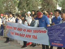 Youth in Da Nang join hands to clean Son Tra peninsula